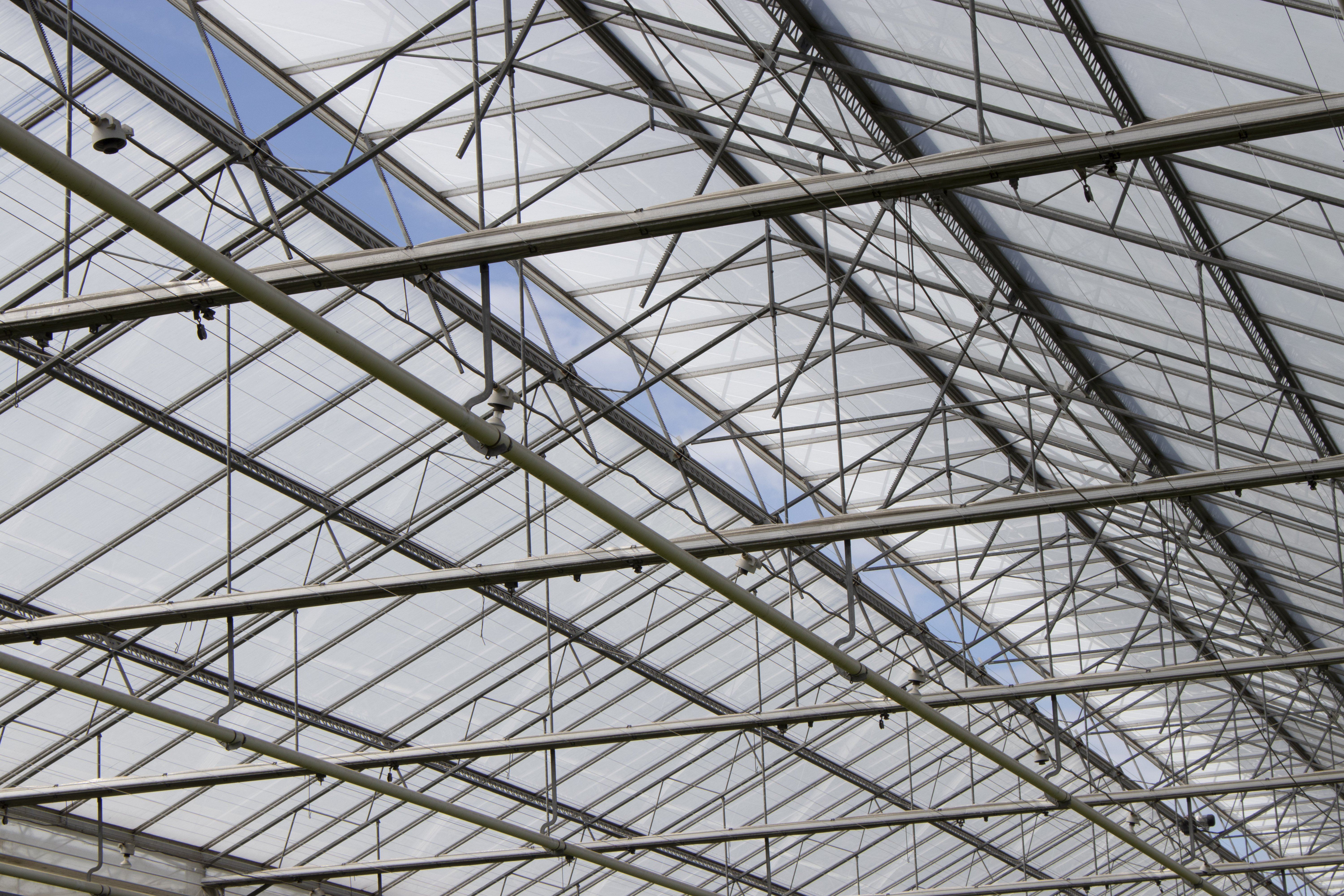 ReduFuse IR is a coating that reduces heat radiation while diffusing the light when it enters the greenhouse.
