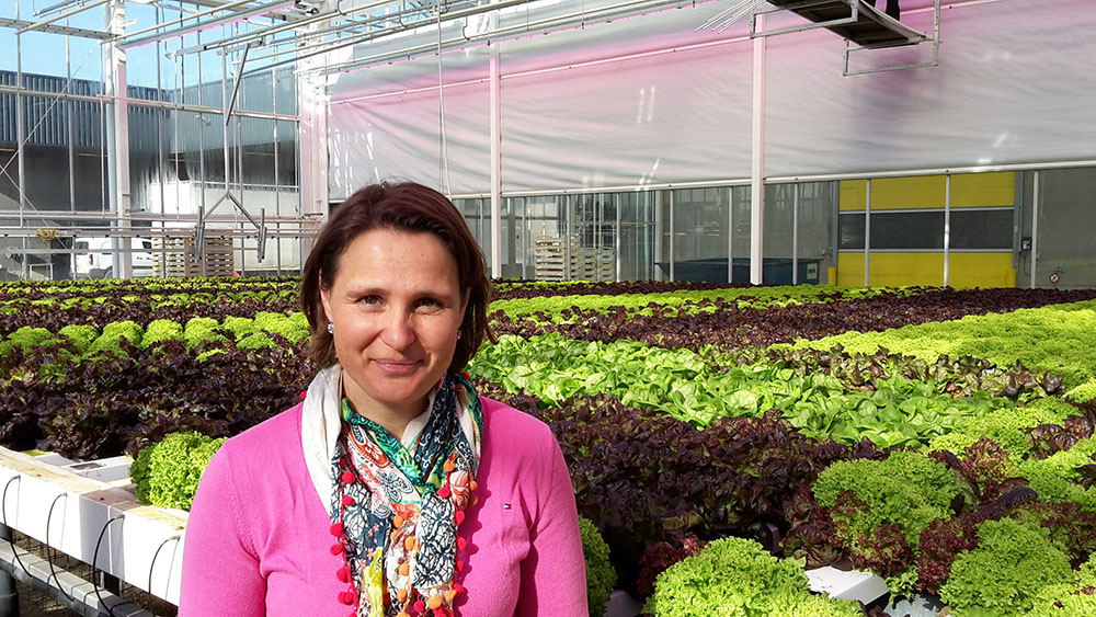 Isabel Vandevelde in a vegetable greenhouse with lettuce