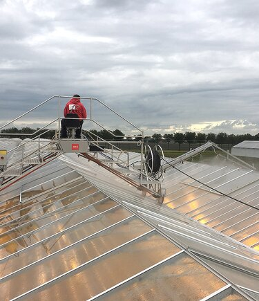 Greenhouse deck cleaning with ReduClean